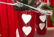 Composizioni Piante Festa San Valentino 2015